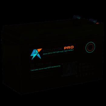 Аккумуляторная батарея Восток СК-1209