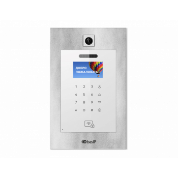 Вызывная панель IP-домофона BAS-IP AA-11BV Silver гибрид