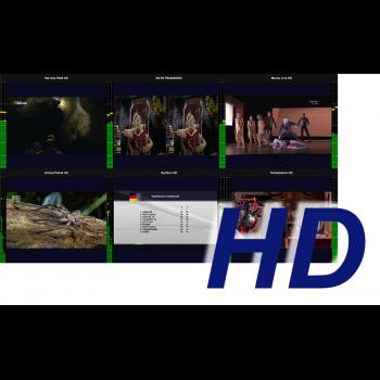 MultiScreen инструментальный контроль и визуализация ТВ каналов HD разрешения (1 канал)