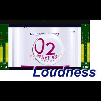 MultiScreen измерение интегрального уровня громкости и визуализация Loudness Meter (1 канал)