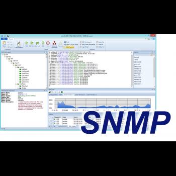 Модуль поддержки протокола SNMP (1 сервер)