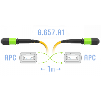 Патчкорд оптический MPO/APC FF SM G.657.A1, 8 волокон, 1 метр (Cross)