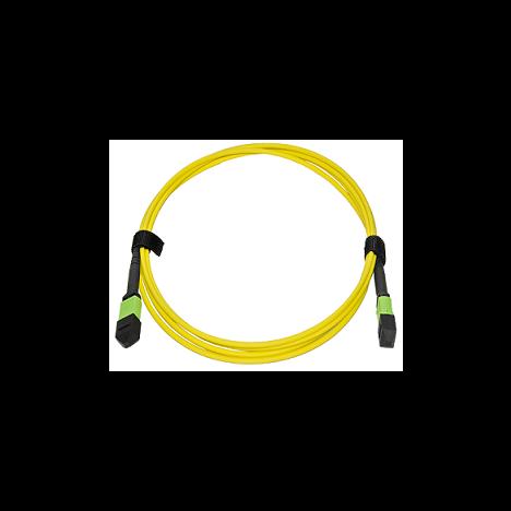 Патчкорд оптический MPO/APC FF SM, 24 волокна, 2 метра (Cross)