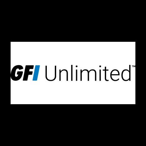 Лицензия GFI Unlimited Software на 3 года для 1 пользователя